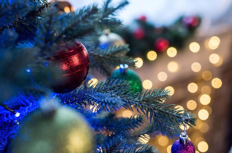 Turnusy świąteczne, dom opieki święta